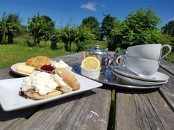 Afternoon Tea - Earl Grey & Scone