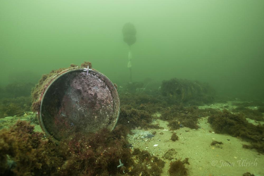 Gefährliche Kriegshinterlassenschaften im Meer / Bild: Jana Ulrich
