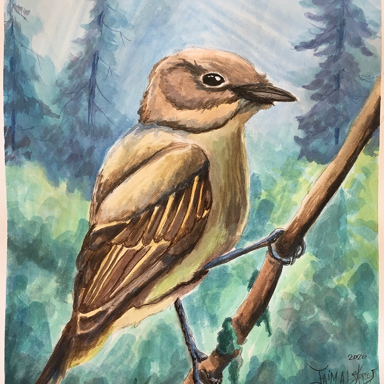 Water Color Wednesdays: Finch