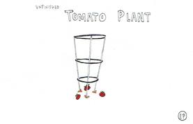 Unfinished Tomato Plant