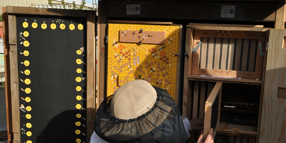 Non-Langstroth Hive Day, $20 (or if taking both classes on 7/14, $30 total)