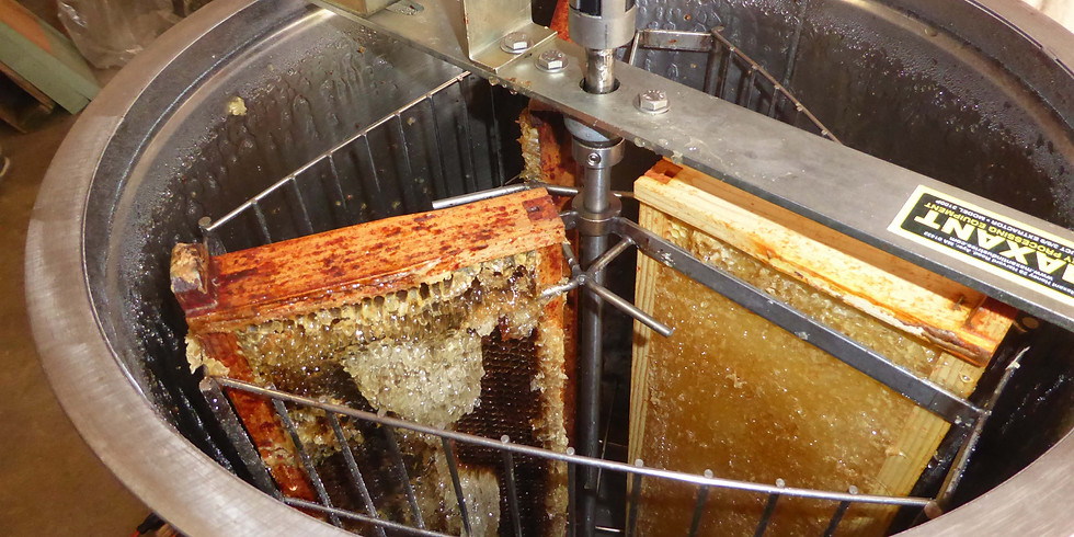 Honey Removal and Processing -- Free class!