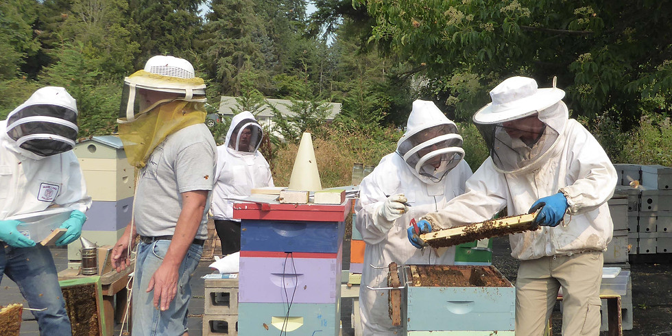 Summer Hive Assessment, $20 (or if taking both classes on 7/14, $30 total)
