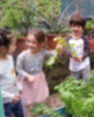 Garden To Table.jpg