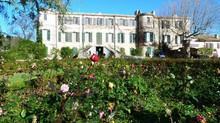 A Truffle Hunting Trip; Chateau Estoublon