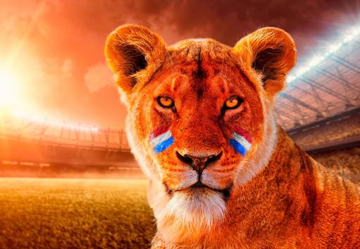 Oranje Leeuwin EK Vrouwen voetbal