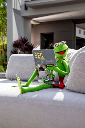 Kermit de Kikker is een muppet die in de jaren vijftig werd bedacht door Jim Henson