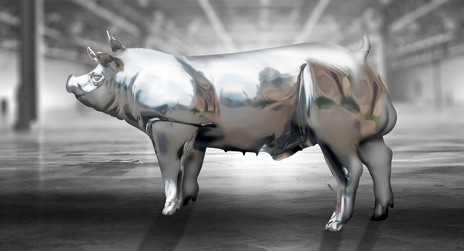 Beeldretouche voor een amerikaanse campagne van Topigs Norsvin Tempo Terminal boar. Fase 2