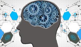 Expertise Calcul modélisation simulation systèmes et IHM. Développement logiciel
