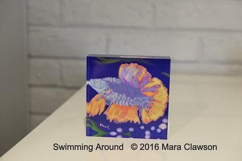 Swimming Around Acrylic Block