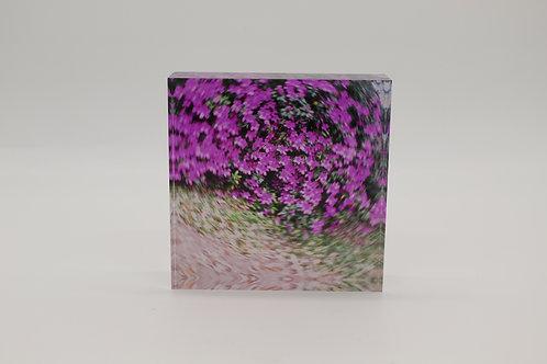 """Azaleas"" Acrylic Block"