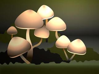 Mary Place wild mushroom digital.jpg