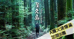 岳03-屋久島.jpg