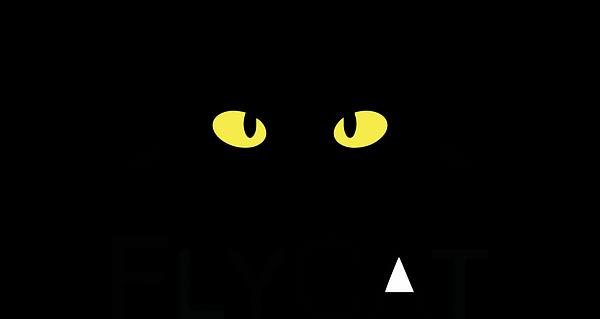 flycat logo - final-ai.png