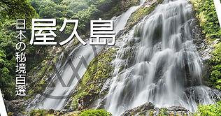 屋久島-1.jpg