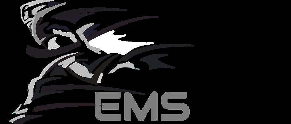 EMS PRO 6.999,- au lieu de 19.999,-