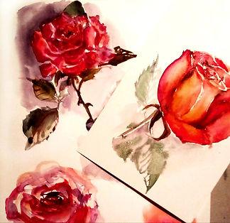 Roses_aquearel·la1.jpg