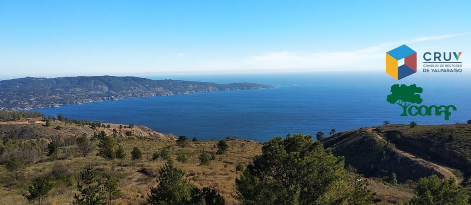 Plan de rehablitación ecológica del fundo Quebrada Verde perteneciente al CRUV (Valparaíso, Chile)