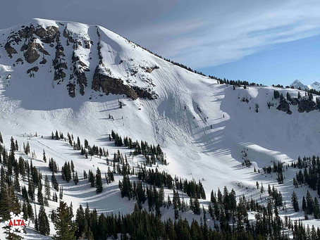 7 Phenomenal Things that Make Alta Magic