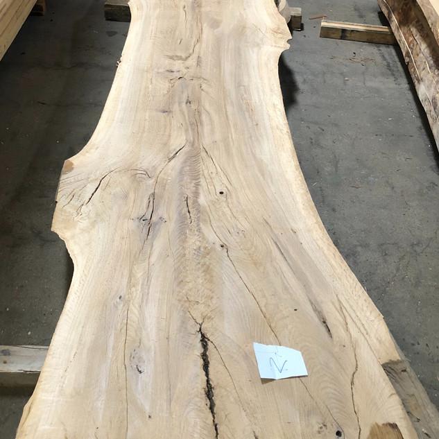 White Oak#2