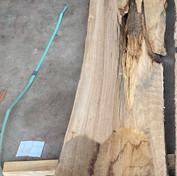 Post Oak White Oak #6.jpg