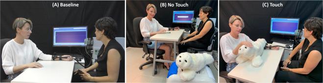 Study design - petting PARO
