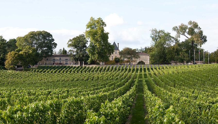 1_Bordeaux_Landscape.jpg