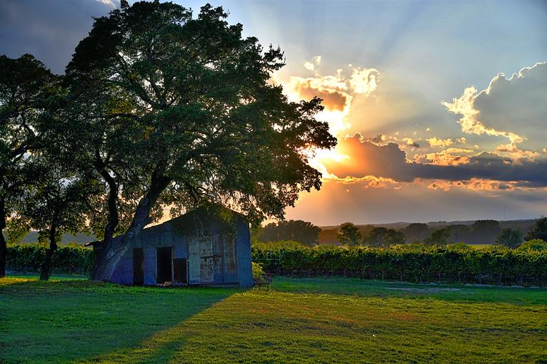 Texas-Website-Photo-1024x683.png