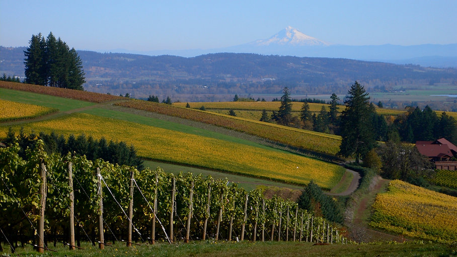 19_Willamette_Valley_Landscape-resized.j