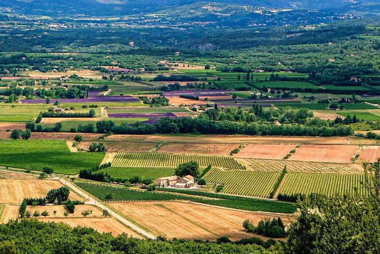 Provence-Hero-1024x683.jpg