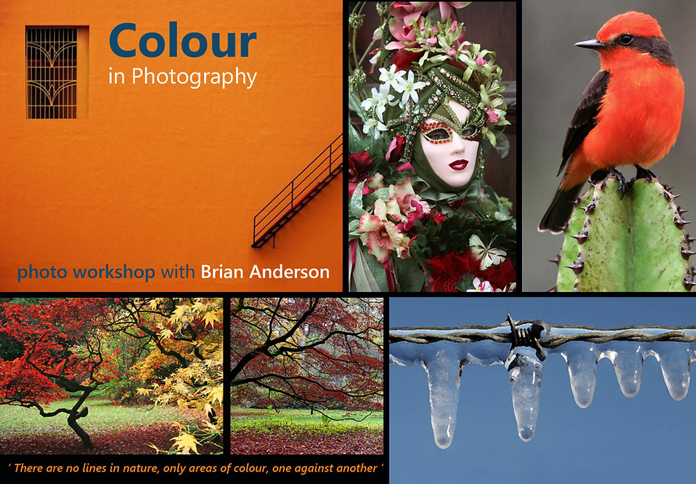 Colour in Photography Workshop