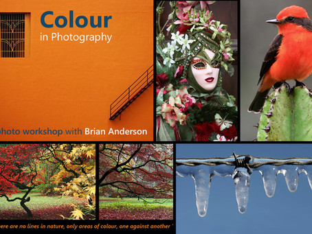 Colour in Photography