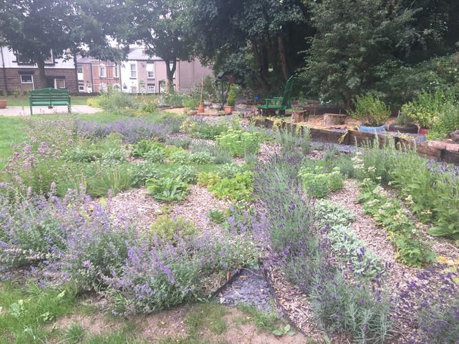 Butterfly & Bee Garden