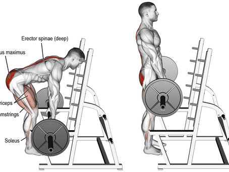 The benefits of Rack Pulls and how to maintain form and muscle engagement.