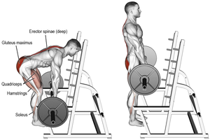 The Rack Pull