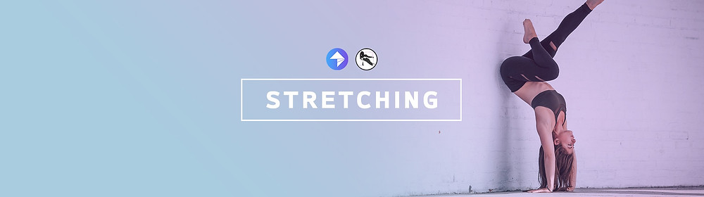 Exclusive* SLFitness - Antoinette Weatherley's Up Your ROM Stretch Package
