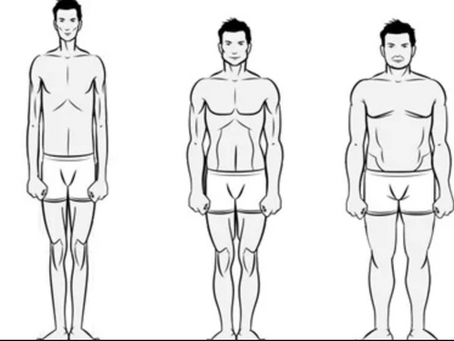 Body-Types & HOW TO FIND OUT WHAT YOU ARE.