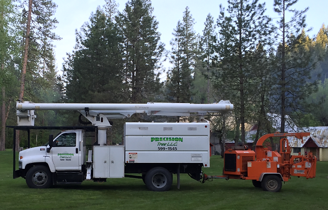 Meridian Idaho Tree Services