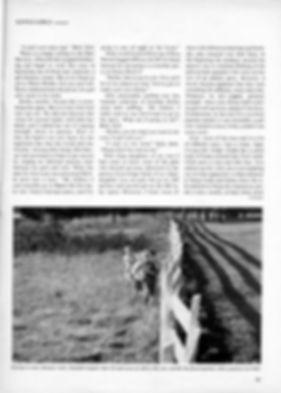 ArticlePage4.jpg
