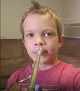 online French horn lessons