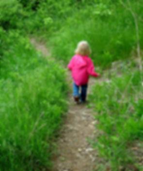 follow-the-path-1310738.jpg