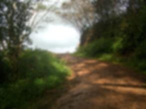 a-road-to-heaven-1373960.jpg