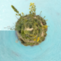 tinyplanet_20180304_134937_image.png