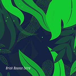 BRISA Brick Bounce Extra
