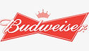 Join The Konsept Party Band at the Fairfield Budweiser, November 16, 2018 in the Taproom! 7-10pm Let's DANCE and have a BALL!!
