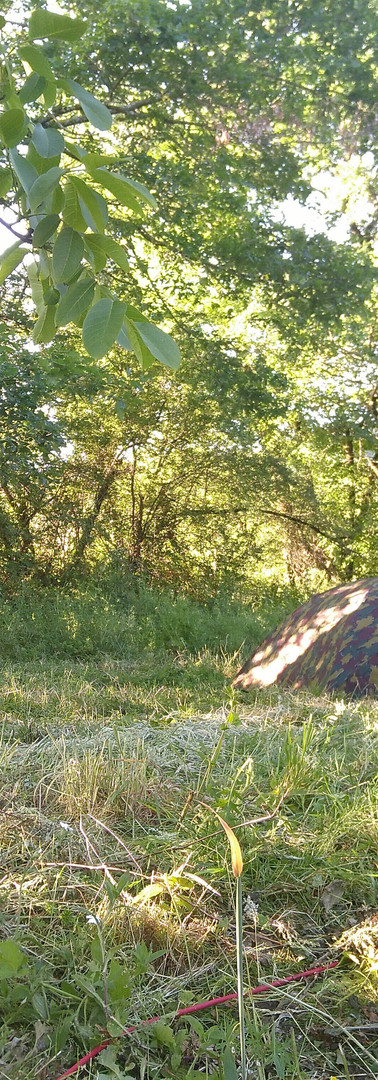 Camping tranquille