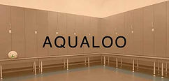 Aqualoo Products