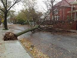 Dojo Closed Tonight Tuesday Only (Thanks Hurricane Nic)