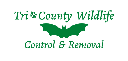 Tri-County Logo Green.png
