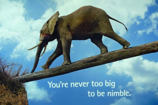 Nimble.jpg